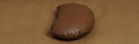 posing_pillow_450