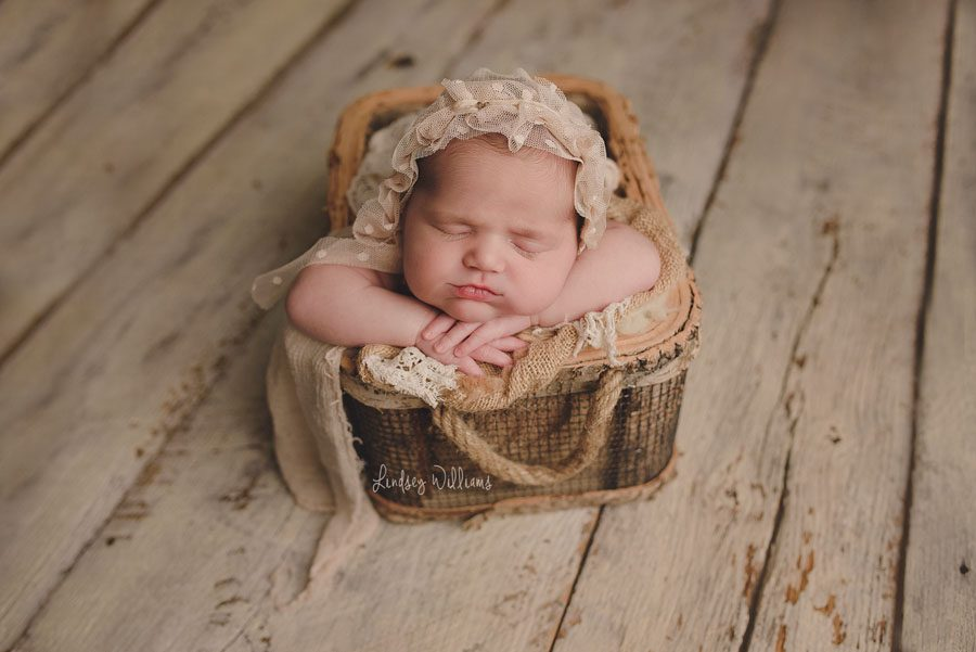 Lindsey Williams using the Newborn Cloud Posing Pillow Set
